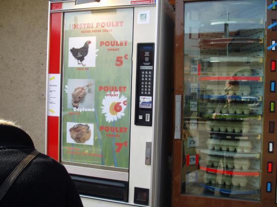 distributeur de poulets